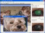 Pet Eye Pilot 3.8.0