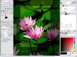 Imagen principal de GIMP