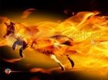 Imagen de Fire Fox