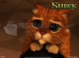 Imagen de Shrek 2 Wallpaper: Gatto con gli stivali