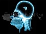Download Radiografía de Homer 1.0