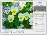 Download Photoshop Camera Raw 9.7