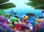 Scaricare Marine Life 3D Screensaver 1.0
