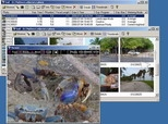 ExifPro Image Viewer 1.0