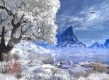 Winter Lake 5.07