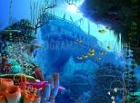 Coral Reef 3D Screensaver 1.0