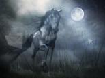 Imagen de Sota la Llum de la lluna