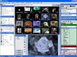 Media Purveyor Lite 3.2