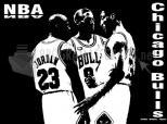 Imagen de Chicago Bulls