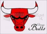 Logotipo Chicago Bulls