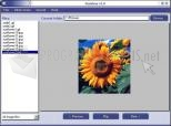 FunView 1.1
