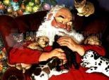Babbo Natale Dormendo