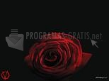 Rosa vermell