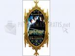 Harry Potter WMP Skin