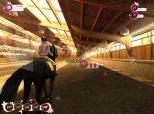 Imagen de Horse Life 2: Amici per sempre