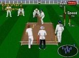 Download Brian Lara Cricket