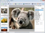 A-PDF Photo Slideshow Builder 1.6.0