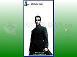 Download Matrix Reloaded Messenger Skin
