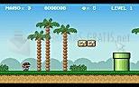 Download Mario Bros y Luigi