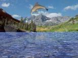 Free 3D Dolphin Aqua Screensaver 3.0