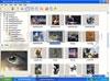 Download internet image browser