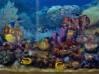 TÉLÉCHARGER living marine aquarium screensaver