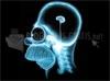 SCARICARE radiografia di homer