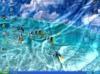Download watery desktop 3d
