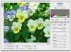 DOWNLOAD photoshop camera raw