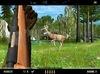 DESCÀRREGA deer drive
