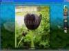 Download flash photo album creator