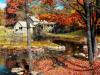 DOWNLOAD 3d falling leaves screensaver