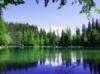Download verde reflexao