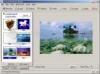 DOWNLOAD image browser arctic