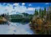 DOWNLOAD 3d four seasons screensavers