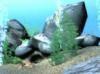Download free 3d marine screensaver