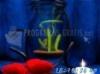 Download dream aquarium 3d screensaver