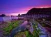 SCARICARE cielo purpura