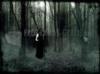 Download bosque tenebroso