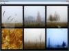 Download atrise foggy autumn