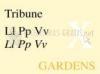 Download tribune font