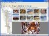 Download xnview pocket pc plugin
