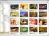 Download studioline photo basic2