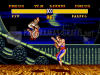 Download street fighter 2 plus champion edition