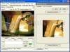 Download amara flash photo animator