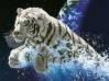 Download leon escapando de la tierra