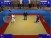 DOWNLOAD 3d judo fighting