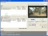 Download asf bin master