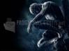 DOWNLOAD spiderman