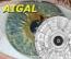 AIGAL